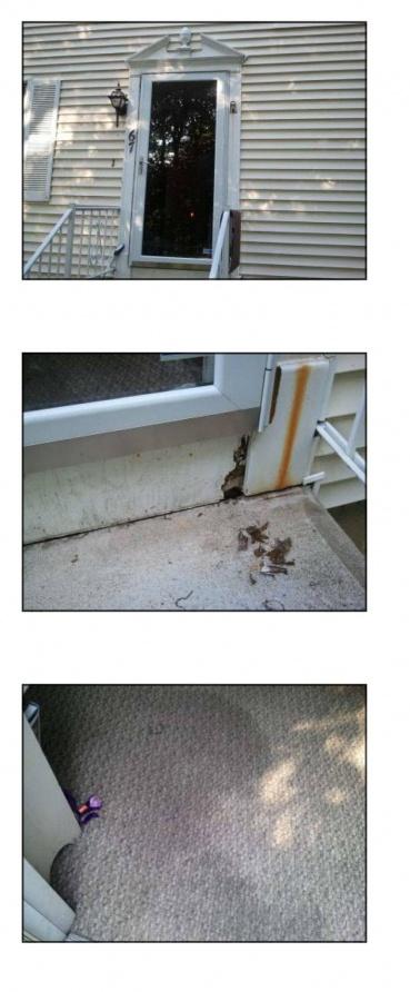 Storm Door-front-door.jpg