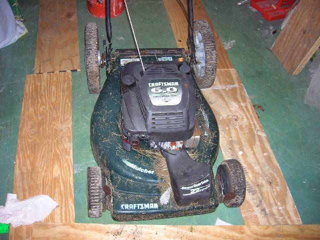 What do you guys think of my new mower? :)   (pics!)-front-shot.jpg