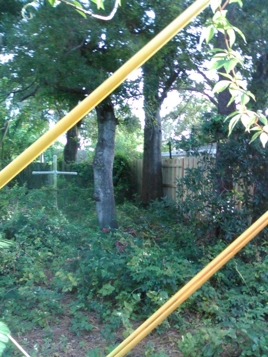 Forest Mulching-frstmulch2.jpg