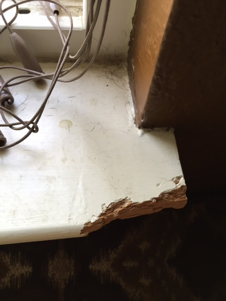 Dog Chewed Wood Window Sill How To Fix Carpentry Diy