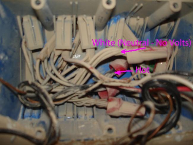 Installing Honeywell 3-way timer switch PLS750C-gang-box-closeup-wht-neu-sp-blk-hot-same-circuit.jpg