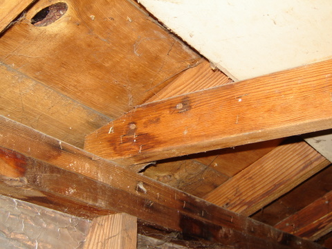 Garage Ceiling-garageproject-007.jpg