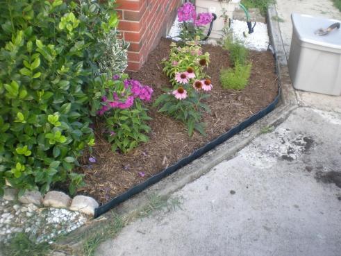 Drainage Issues-garden-002.jpg
