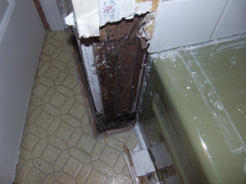 Bathroom tub leak-gedc0048.jpg