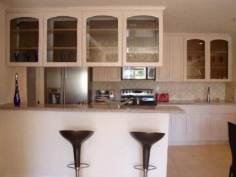 To open up the kitchen or not-glass-door-cabinet.jpg