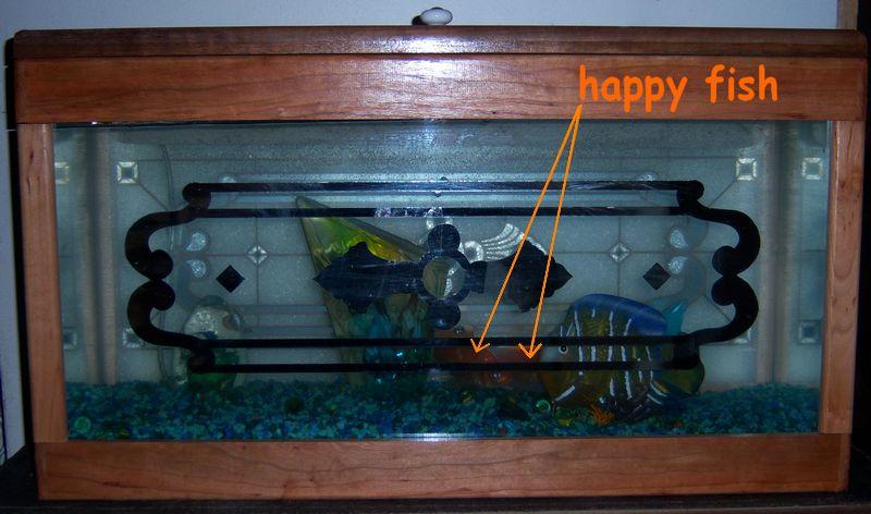 The Psychedelic Fishtank!-happyfish.jpg