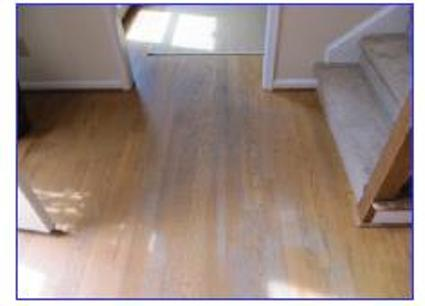Tell me what to do with my hardwoods!!-hardwood-floors.jpg