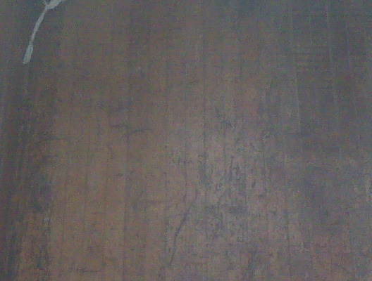 Can I save these old hardwood floors?? (pictures included)-hardwood2.jpg