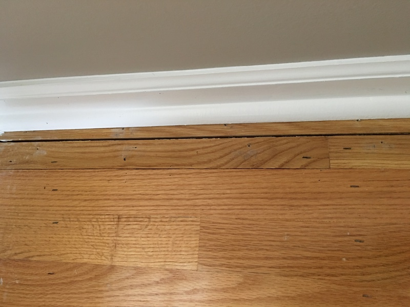 Whats the best way to fill a gap in hardwood floor thats about 2 dimes wide?-hardwoodcrack.jpg
