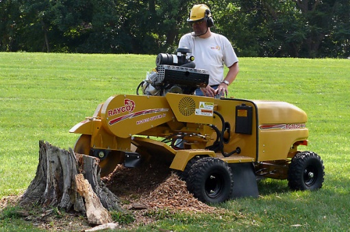 Help with Stump Removal-hgpro_demo_ss6_raycostumpcutter-rg1635_w609.jpg