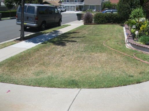 cant get this bermuda lawn to green up-house-floor-plans-081.jpg