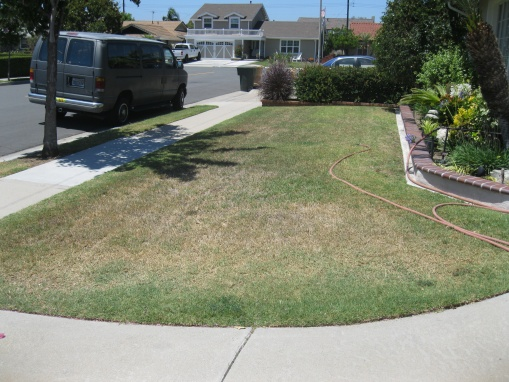what do I need to do 1st to green up/fix my lawn-house-floor-plans-082.jpg