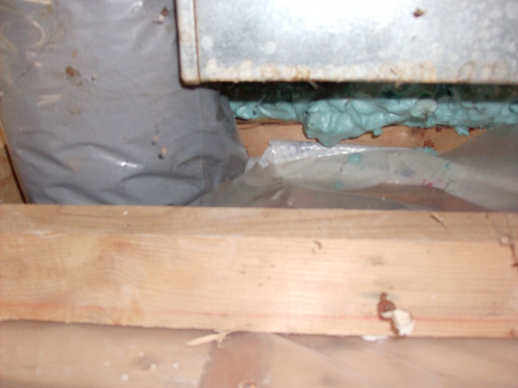 Repairing interior wall cavity with mold, what would you do? (Pics included)-hpim0084.jpg