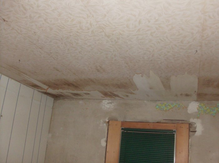 Ceilings and walls???-hpim1069.jpg