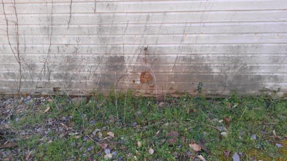 Repairing exterior wall-imag0015.jpg