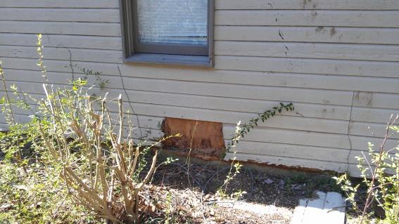 Repairing exterior wall-imag0018.jpg