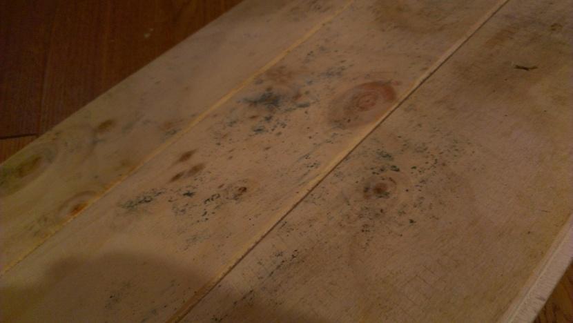 Mold Under Floor Photos Flooring Diy Chatroom Home