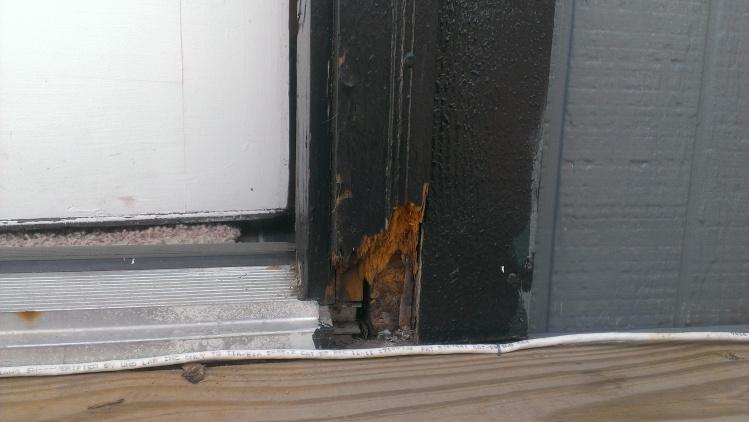 Noob project #2? Rotten door trim-imag0173.jpg