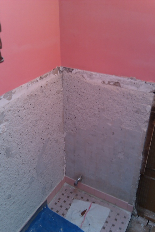 Thin-set or wet-bed mortar mix?-imag0495.jpg
