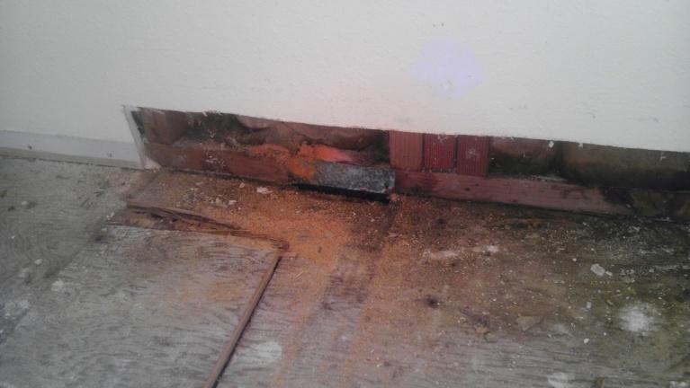Subfloor removal help-imag0541.jpg