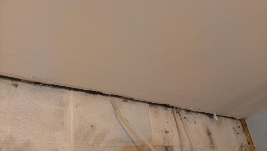 Skim over lifted tape edges?-imag1058-1-.jpg