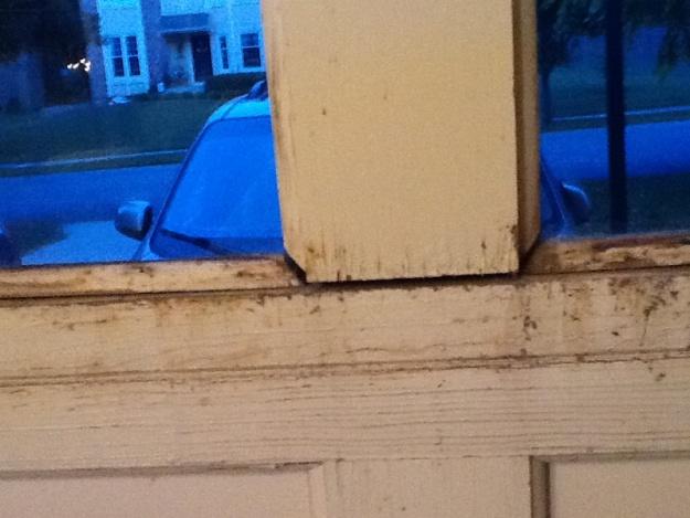 Seperating Garage Doors-image-1107744539.jpg