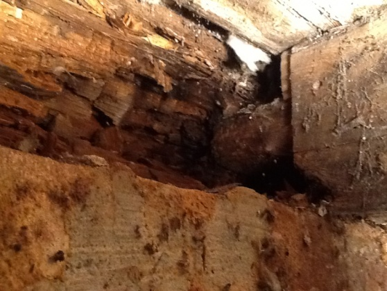 Replacing rotted sill plate in 120 yr old home-image-1111004845.jpg