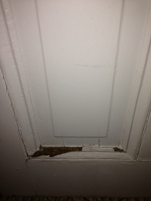 Need help restoring 100 yr old door-image-1142654962.jpg