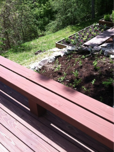 Deck Stain Help-image-1259018421.jpg
