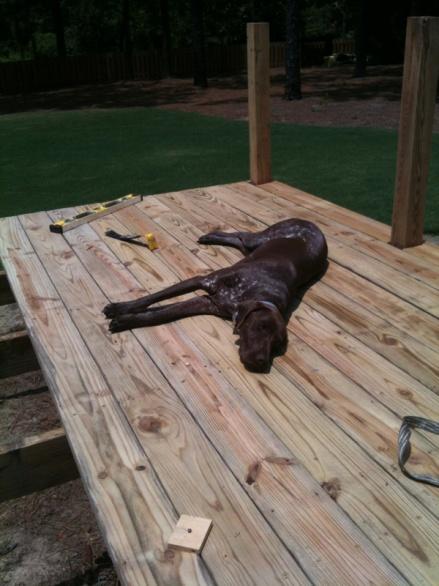 Deck rebuild-image-1281182307.jpg