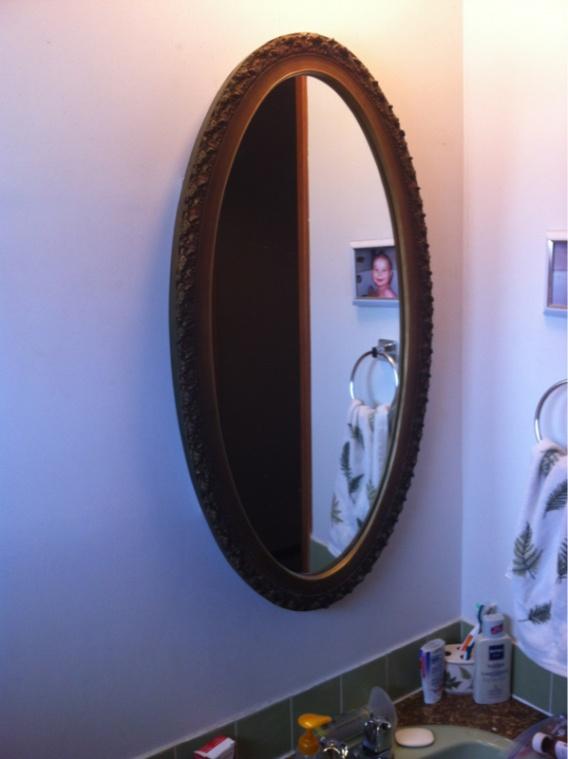Bathroom Renovation-image-1313216709.jpg