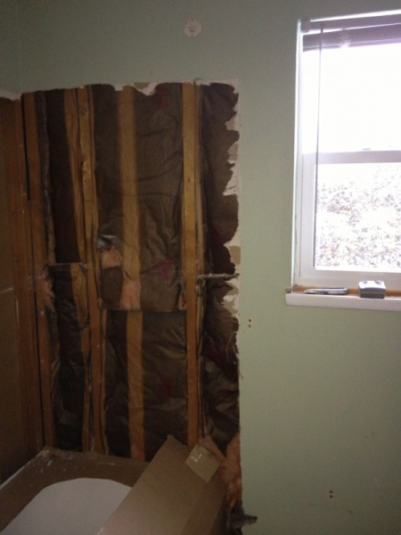 Bathroom wall transition-image-1435493729.jpg