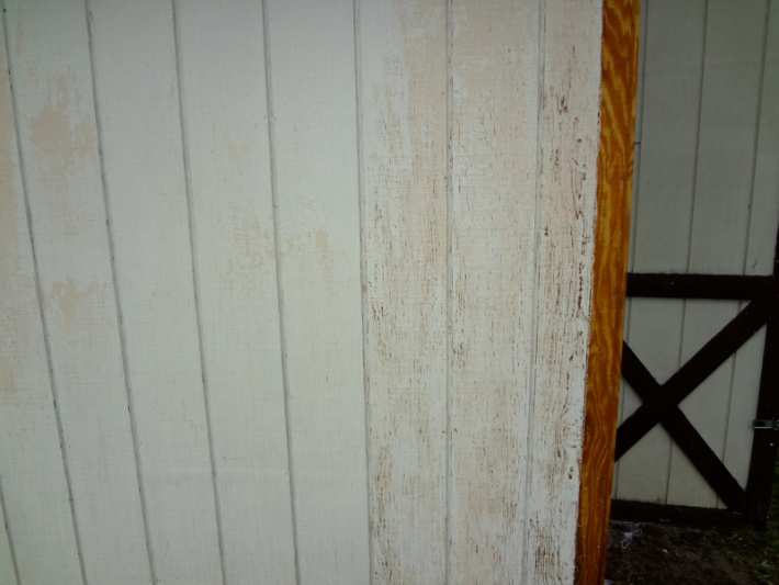 Painting a shed-image-1481672122.jpg