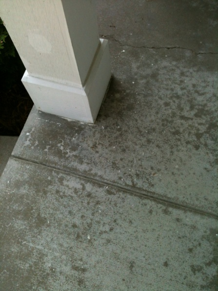 Discolored concrete patio-image-1502309737.jpg