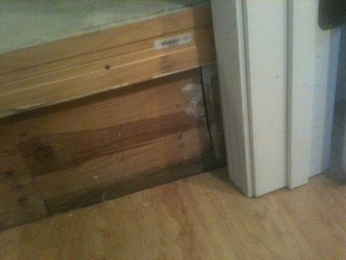 Steps in front of Bathroom-image-1606537071.jpg
