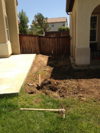 Need Suggestions w/ my front yard... *PICS*-image-1613506901.jpg