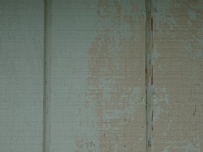 Painting a shed-image-1654396807.jpg