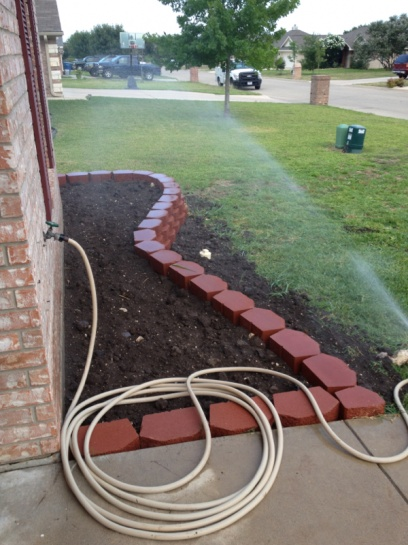 New landscaping need plant ideas..-image-1684029606.jpg