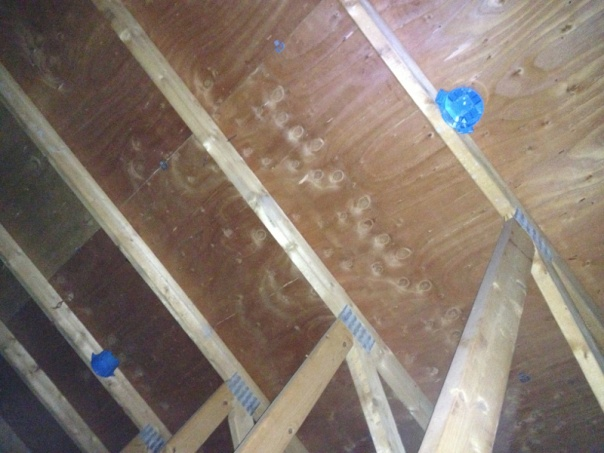 Adding a couple additional ceiling lights to attic-image-1766233888.jpg