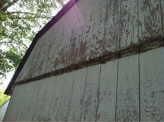 Damaged siding...repair ideas?-image-205480407.jpg