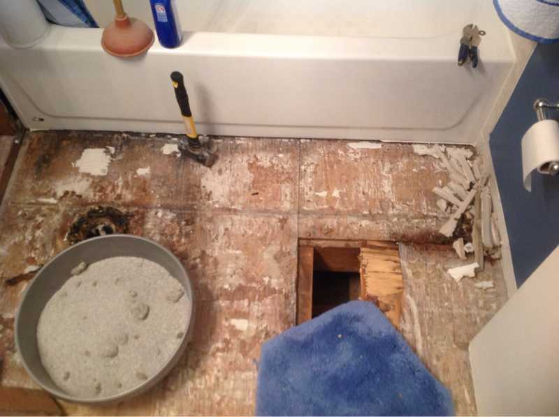 Hall bathroom gut due to structual issue-image-2069308430.jpg