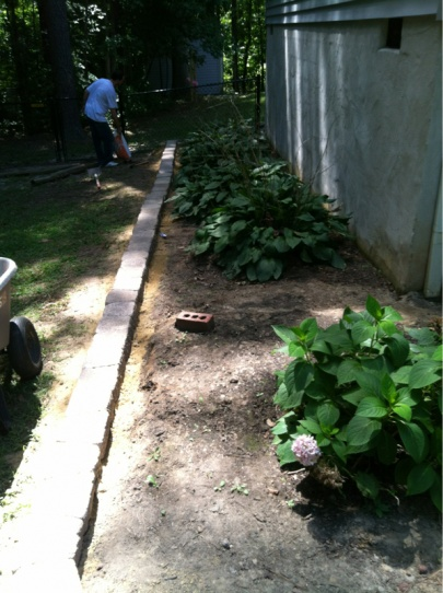 Need tips for flower garden-image-2072745239.jpg