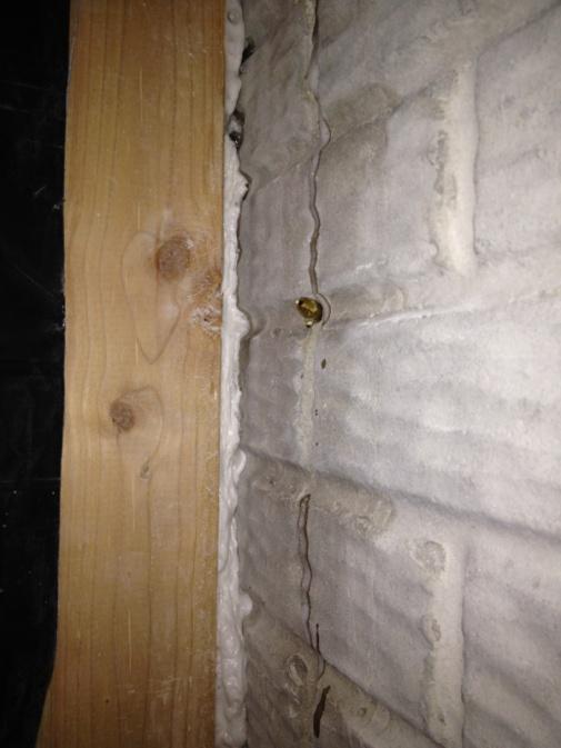 Water in basement-image-2086430404.jpg