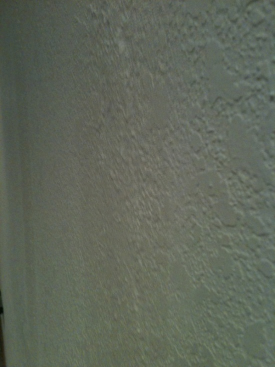 painting drywall w/ knockdown texture-image-214320347.jpg