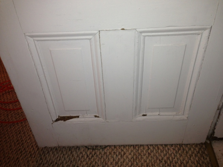 Need help restoring 100 yr old door-image-2186517129.jpg