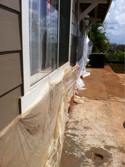 Removing stubborn paint-image-2240777497.jpg