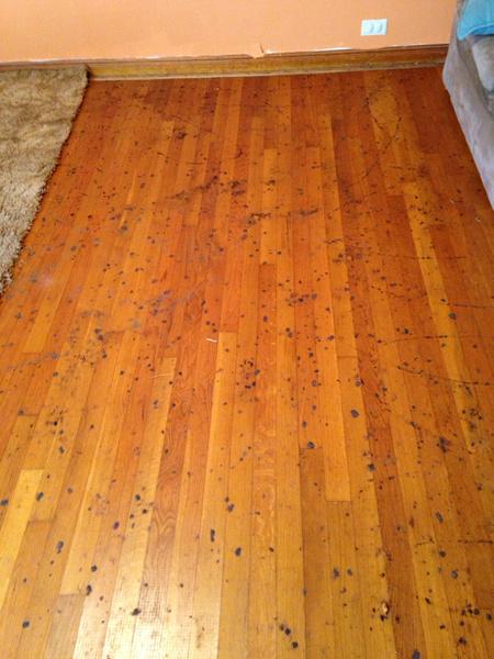 Spots On Wood Floor Flooring Diy Chatroom Home