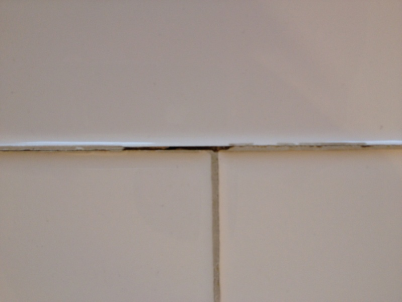 Bathroom tile grout repair-image-2367747080.jpg