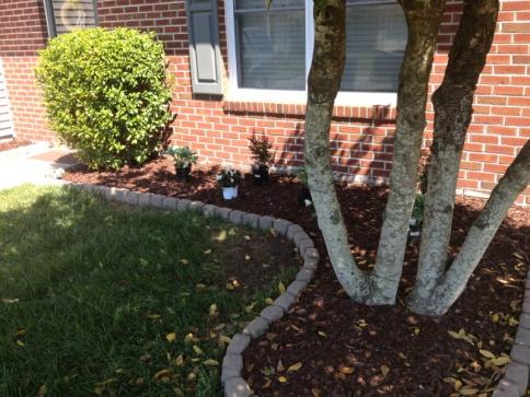 Landscaping help-image-2476887715.jpg