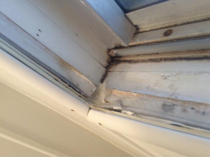Replacing an in-shower window-image-248043171.jpg